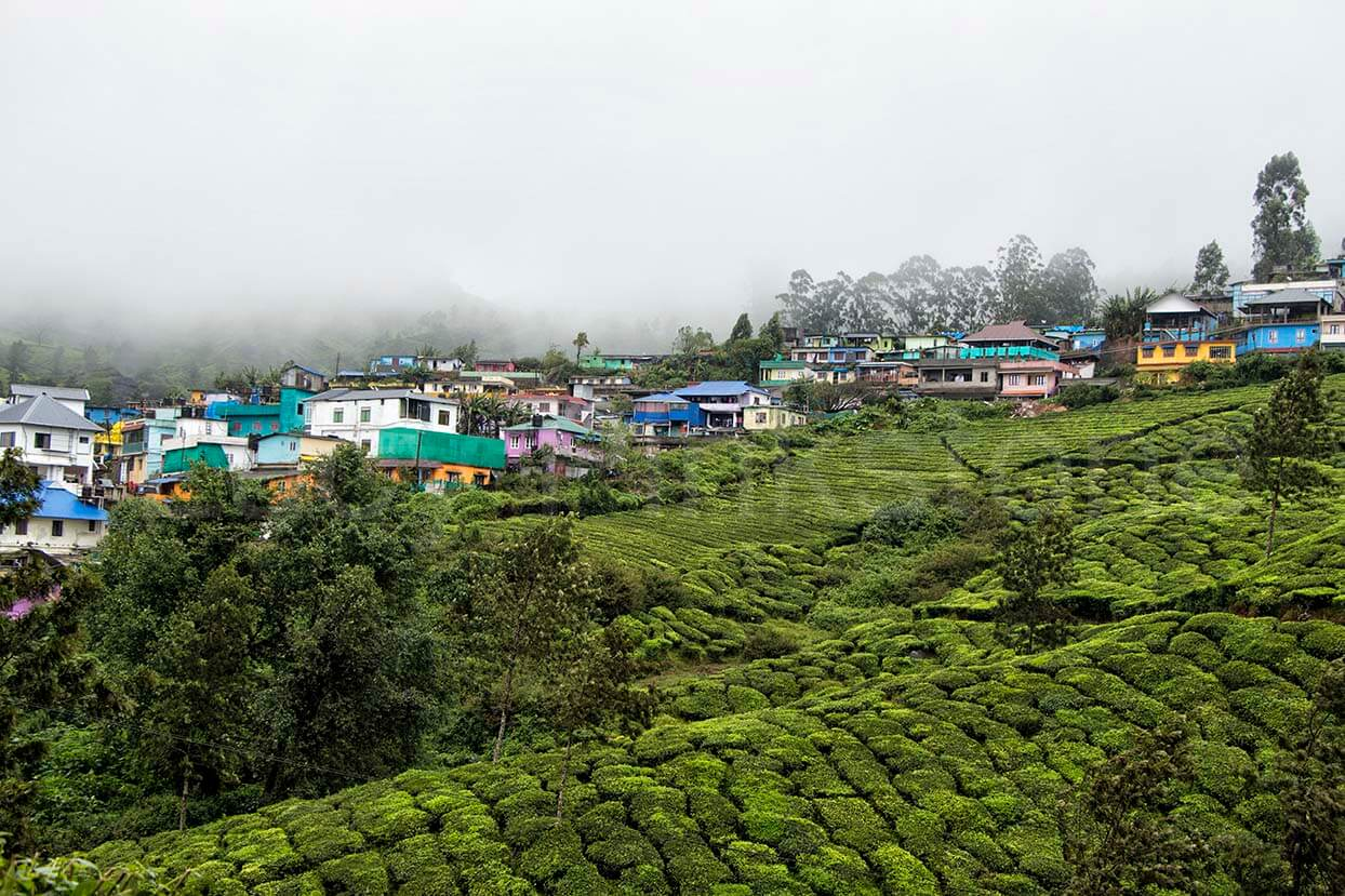 Colourful buildings in Munnar, India